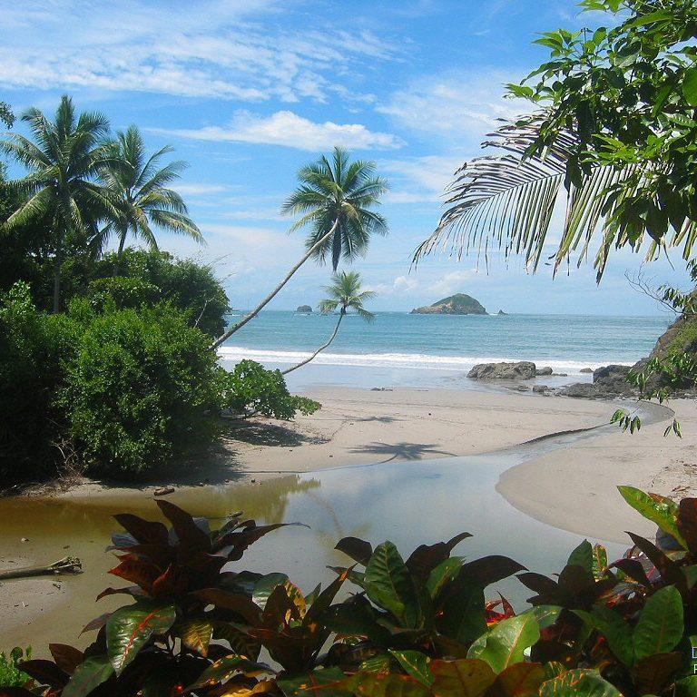 Manuel Antonio Tours - Native's Way Costa Rica - Manual Antonio Tours and Transfers
