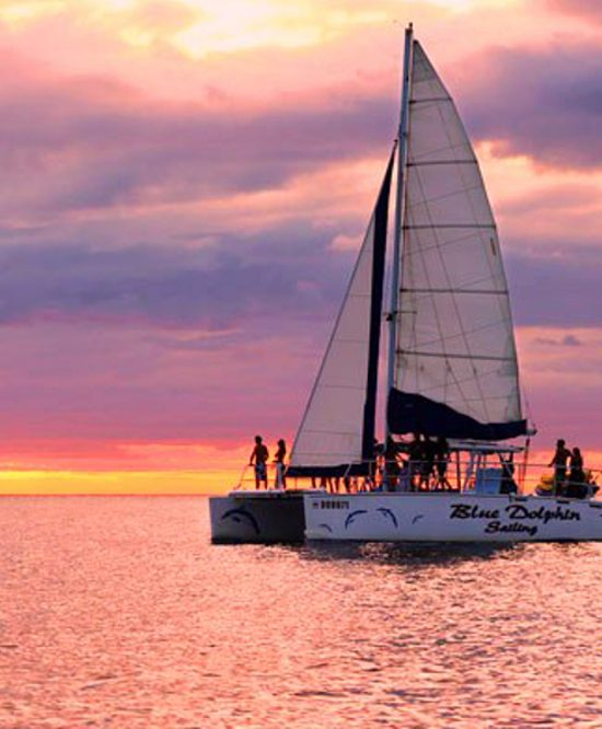 Blue Dolphin Tamarindo Catamaran Sunset Cruise - Natives' Way Costa Rica Tours