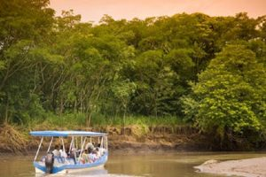 Palo Verde Boat Tour Safari - Native's Way Costa Rica - Tamarindo Tours