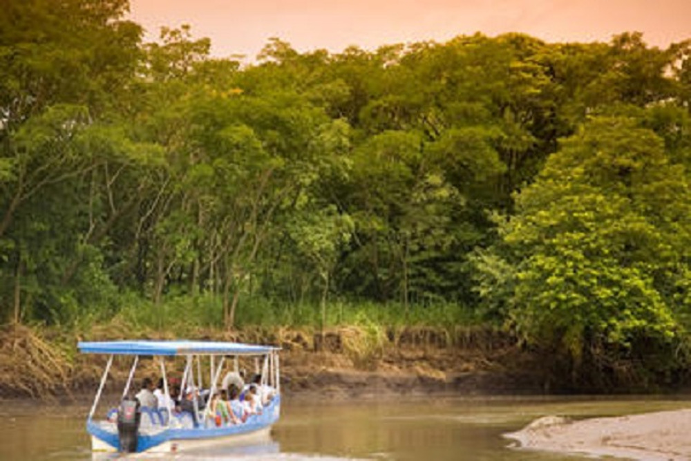 Palo Verde Boat Tour Safari - Native's Way Costa Rica - Tamarindo Tours
