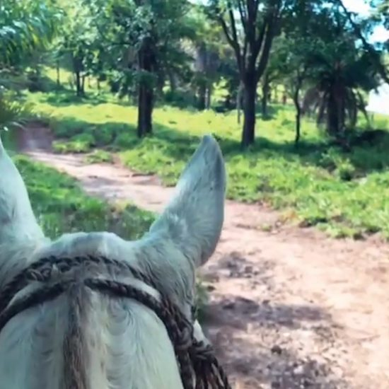 Horseback Riding Guachipelin Volcano Adventure Tour - Rincon de la Vieja Volcano Tours - Native's Way Costa Rica - Tamarindo Tours and Transfers