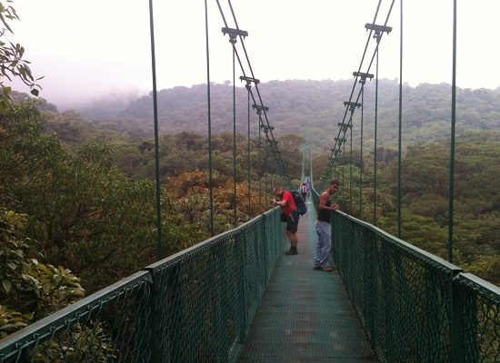 Monteverde Hanging Bridges - Monteverde Cloud Forest Tour - Native's Way Costa Rica Tours