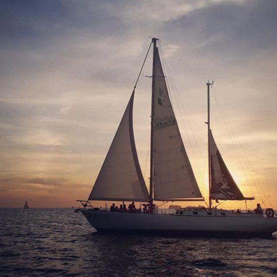 Pegasus Private Sunset Sailing Cruise Tamarindo Flamingo Costa Rica - Tamarindo Tours