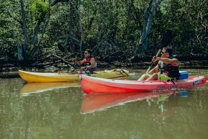 Tamarindo Kayak Estuary Tour - Native's Way Costa Rica - Tamarindo Tours & Transfers