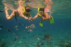 Tamarindo Kayak Snorkel Tour - Native's Way Costa Rica - Tamarindo Tours and Transfers