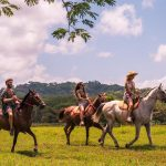 Tamarindo Horseback Riding Tour - Native's Way Costa Rica - Tamarindo Tours