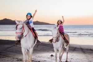 Tamarindo Horseback Riding Tour - Native's Way Costa Rica - Tamarindo Tours