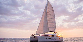 Panache Catamaran Tour Flamingo