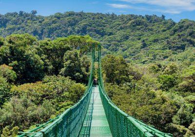 Monteverde Hanging Bridges - Native's Way Costa Rica Monteverde Tours
