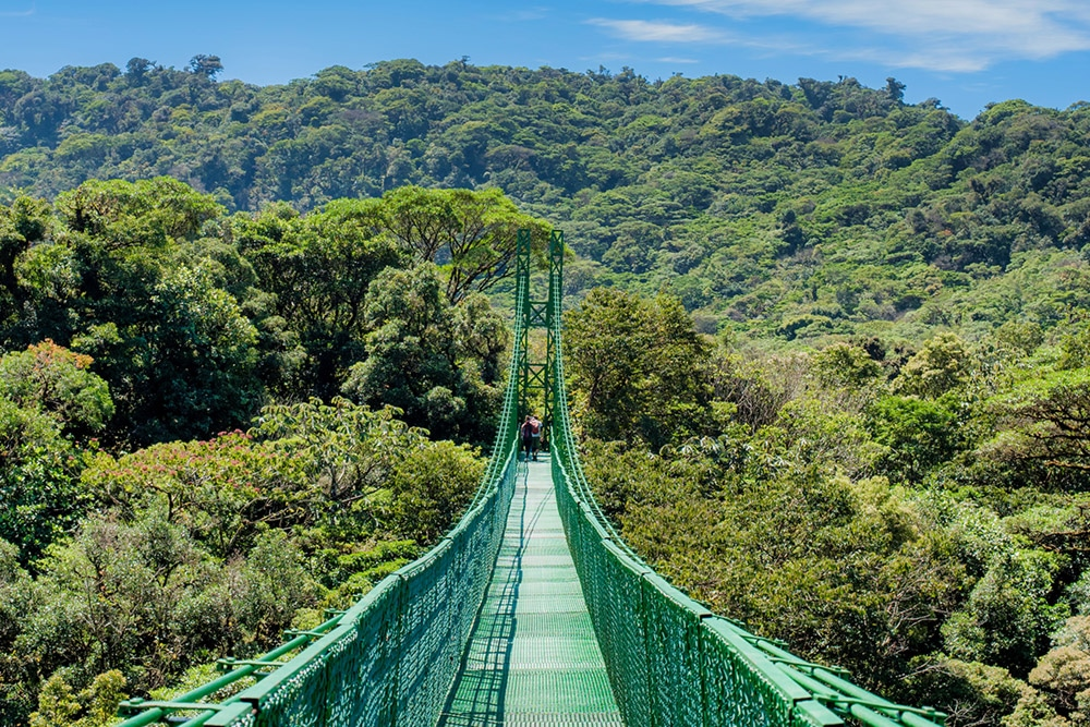 Monteverde Hanging Bridges - Native's Way Costa Rica Monteverde Tours